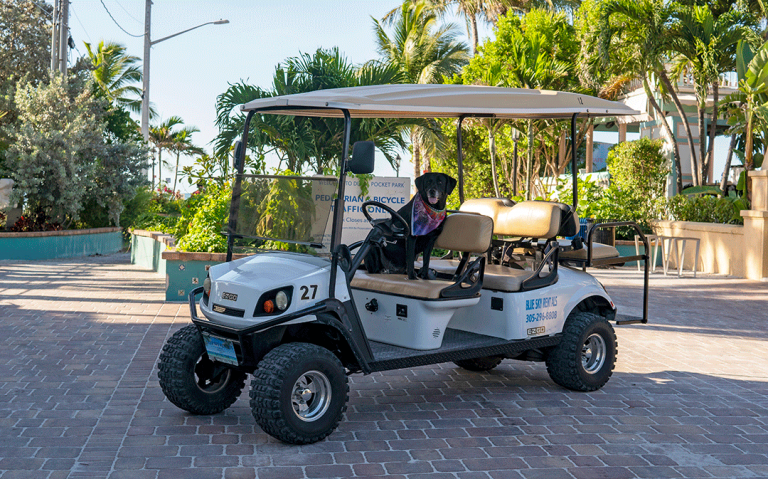 6 Seat Gas Golf Cart Rentals-Blue Sky Rentals-Key West